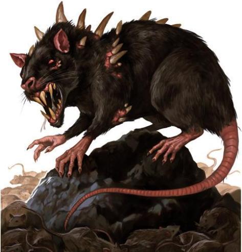 Dire_Rat